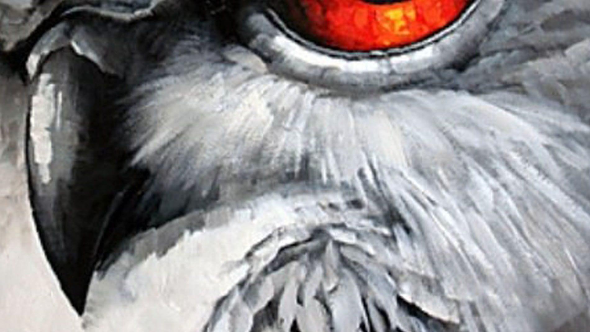 """Картина маслом """" Орлиный глаз """""""